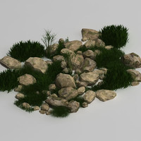 plant rock 3d model