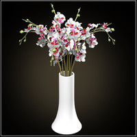 3d orchids bouquet