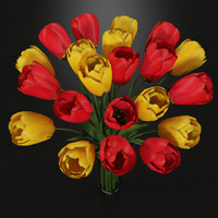 Plant Tulips In Vase Red Yellow