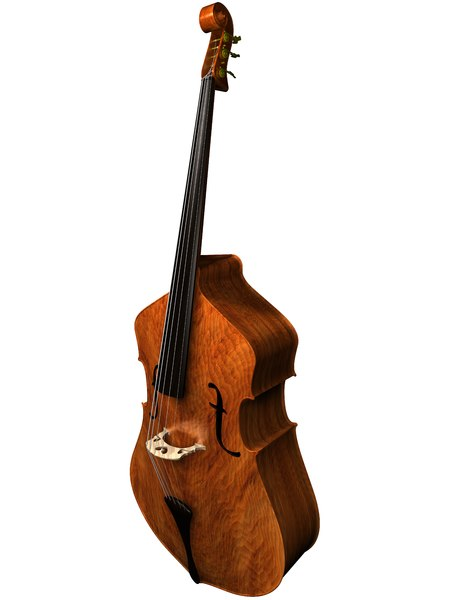 upright bass2.jpg