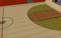3d 3ds basketball s court