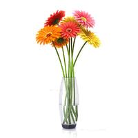 Flowers gerbera 2