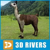 3dsmax llama animals peru