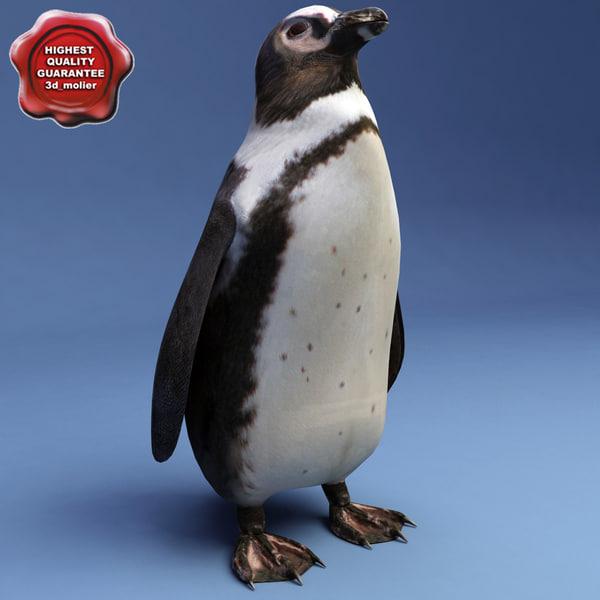 Penguin_00.jpg