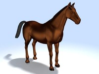 horse 3ds
