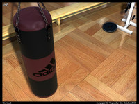 3d model gym punching bag