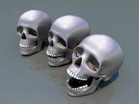 medium human skull 3d 3ds