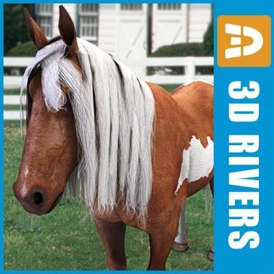Brown_with_white_pony_logo.jpg