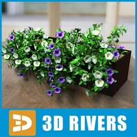 Flowerpot with petunia by 3DRivers