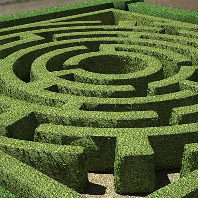 Garden maze pictures to pin on pinterest pinsdaddy for Garden maze designs