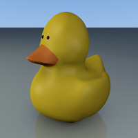 Rubber Ducky Toy