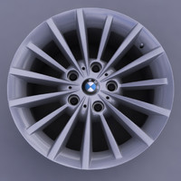 BMW 3 rim