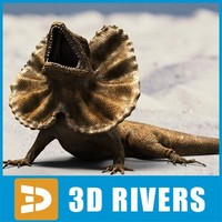 frilled lizard 3d model