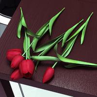 tulips lie 3d model