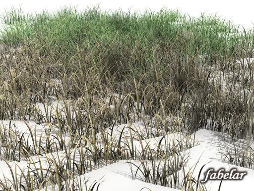 grass_07off.jpg