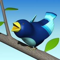 max small bird