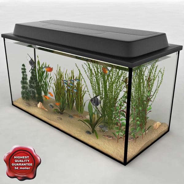 Aquarium_V11_00.jpg