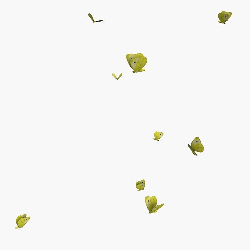 animals-flock-of-butterflies-b-247.jpg