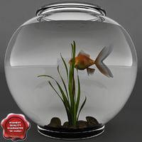 Aquarium V8