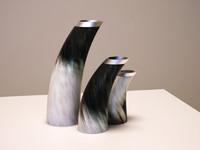 Horn vases