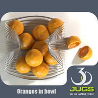oranges bowl 3d model