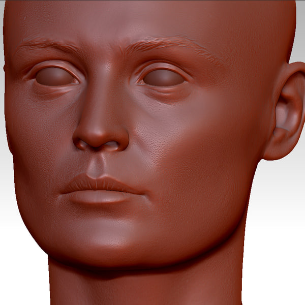 head girl human 3d model - Lyne Head (High Res)... by Eyetronics