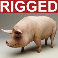 max pig rigged