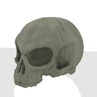 skull (hires+lowres)