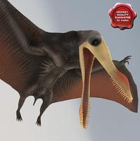 Dinosaur Pterosaur Rigged