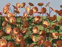 flower dahliapink 3d model