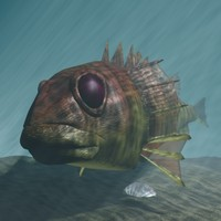 Rascasse - Lion fish 3D