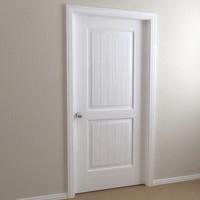 interior door - shaker max