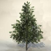 3d pc tree model