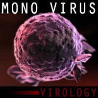 3d model mononucleosis infectious virus
