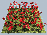 flower dahlia red 3d model