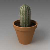 cactus decorating 3d 3ds