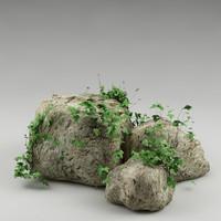 plant rocks 3d model