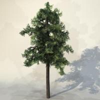 Tree_n_20.zip