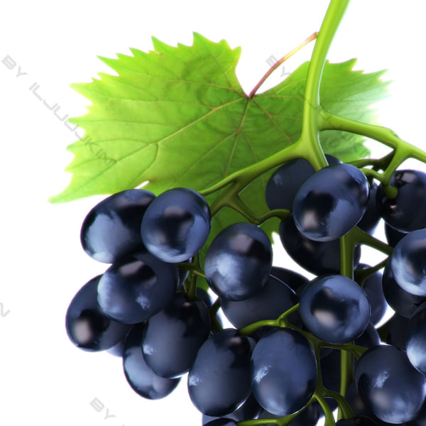 realistic grapes black 3d model - Grapes black... by iljujjkin