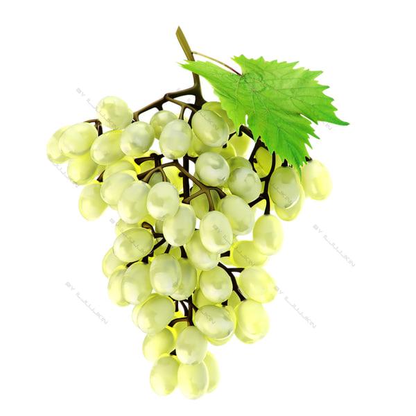 Grapes_white_02.jpg