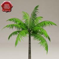 LowPoly Palm V1