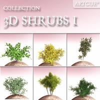 shrub r 3d model