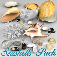 Seashells Pack-2