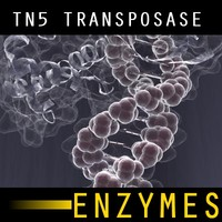 TN5 Transposase