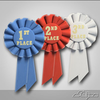 Ribbon Title pin