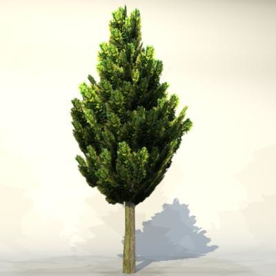 pc tree 3d model - Tree_010.zip... by GameStuff