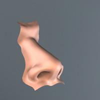 nose human 3d model
