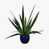 3ds max indoor potted plant