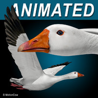 flying goose 3d model