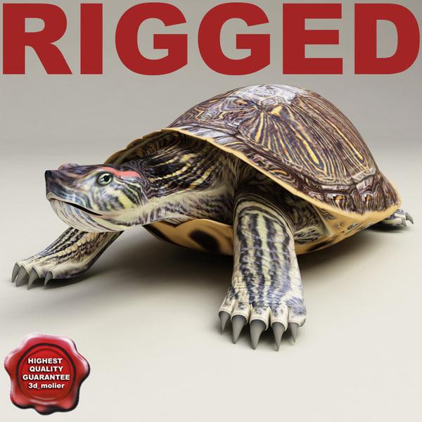 Turtle_Red-eared_Slider_Rigged_00.jpg